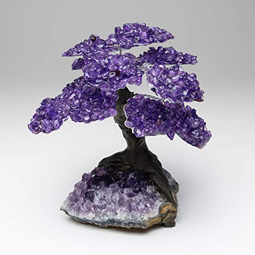 Large Amethyst Clustered Gemstone Tree on Amethyst Matrix