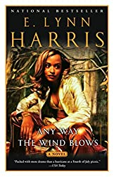 Any Way the Wind Blows: A Novel (Basil and Yancy Series)