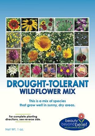 Drought Resistant/Tolerant Wildflower Seeds - Bonus 8 eBook Gardening Series - Open-Pollinated Bulk Flower Seed Mix for Beautiful Perennial, Annual Garden Flowers - No Fillers - 1 oz ()