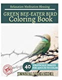 GREEN BEE-EATER BIRD Coloring Books: For Adults and Teens  Stress Relief Colorin: sketch coloringbook  40 Grayscale Images