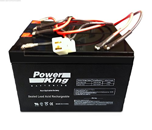 (Beiter DC Power Razor Scooter Battery E200/300- E200 (V13+) E300 (V11 & V13+) - W13112430185 Replacement Battery Includes Wiring Harness)