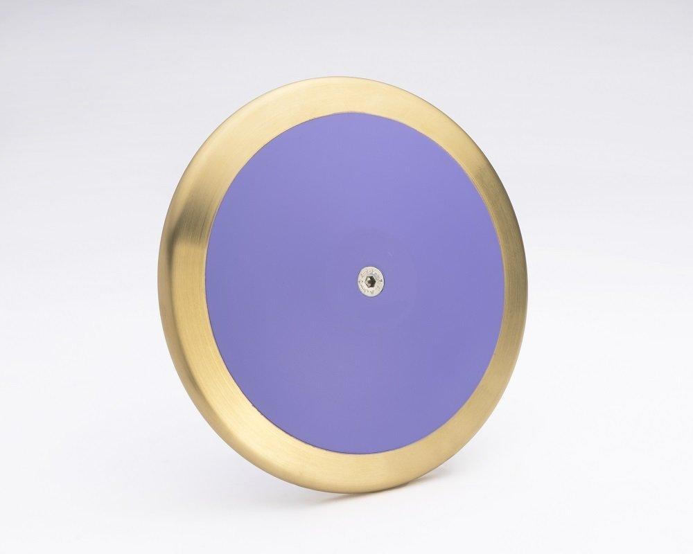 【楽天最安値に挑戦】 Five 1.6 Star intermediate discus. to advanced skill & level high school teens high spin 83% brass rim weight 1.6 kilo track & field discus. B079ZH33JS, ブンキョウク:a7f6d294 --- ballyshannonshow.com