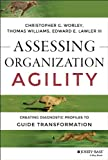 img - for Assessing Organization Agility: Creating Diagnostic Profiles to Guide Transformation (J-B Short Format Series) book / textbook / text book