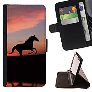 For Apple iPhone 5 / iPhone 5S,S-type  animales lindos del caballo- Dibujo PU billetera de cuero Funda Case Caso de la piel de la bolsa protectora
