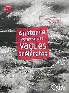 """Afficher """"Anatomie curieuse des vagues scélérates"""""""