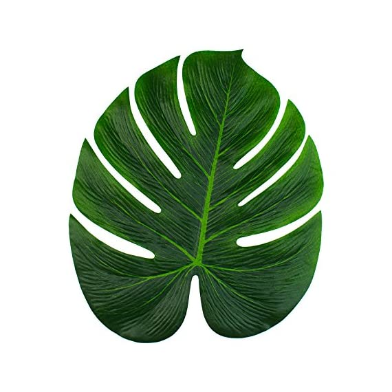 """Super Z Outlet Tropical Imitation Green Plant Paper Leaves 13"""" Hawaiian Luau Party Jungle Beach Theme Decorations for Birthdays, Arts & Crafts, Prom, Events, Weddings (6 Pack) - Create an authentic tropical island atmosphere with these large beautiful green faux leaves. Pair these with Hawaiian flowers and make them a stunning choice for party decorations Hawaiian style! Make beautiful vibrant decorations for the home living room, dining table, bedrooms, art gallery, luau party, restaurant decor and more. Use as a table scatter all over the an event venue, beach party, as party favors or stick some onto the walls! Place these large life-like leaves into vases, matched with other tropical plants, or hibiscus flowers and Hawaiian leis to create a effective stunnig tropical party decor. Make your guests feel like they're in paradise with these realistic polyester leaves. - living-room-decor, living-room, home-decor - 51S5cj6qdlL. SS570  -"""