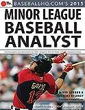 2015 Minor League Baseball Analyst