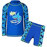 TFJH E Kids Boys UPF 50+ UV Sun Protective Long Sleeve Two Piece Swimsuit 4-12Years