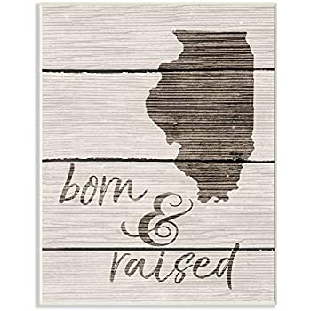 The Stupell Home Décor Collection Born and Raised Illinois Wall Plaque Art, 10 x 15