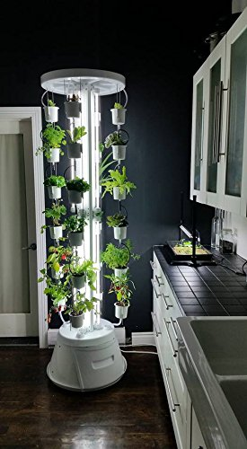Nutritower vertical indoor hydroponics garden system the for Indoor gardening made easy