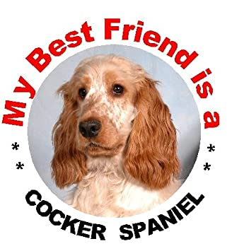 COCKER SPANIELS ON BOARD Car Sticker By Starprint