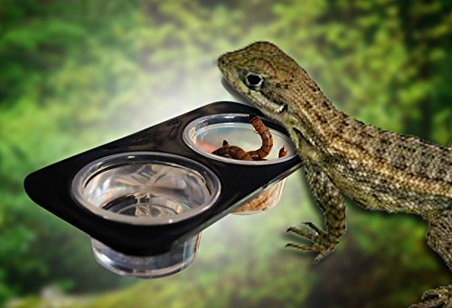 Gecko Suction Cup (2 Bowls ABS Suction Cup Mini Worm Dish Reptile Gecko Food Bowl Ledge Feeder)