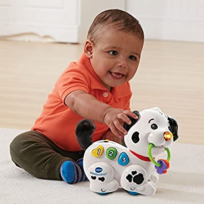 VTech Roll & Discover Puppy: Toys & Games