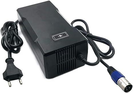 YZPOWER 29.4V 5A Cargador de batería de Litio para 7S 24V ...