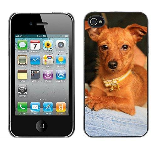 Bild Hart Handy Schwarz Schutz Case Cover Schale Etui // M00133813 Puppy Dog Mascot // Apple iPhone 4 4S 4G