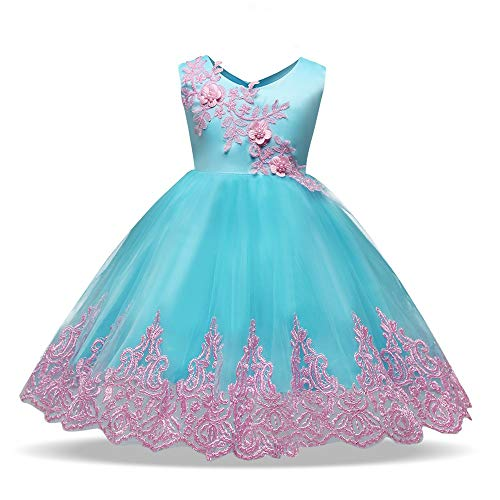 Xiuzhifuxie Baby Girl Sleeveless Embroideried Floral Lace Birthday Wedding Party Dresses Toddler Princess Flower Dress Tulle Christening Baptism Pageant Dress Gown (Pattern : Blue, Size : 110) ()