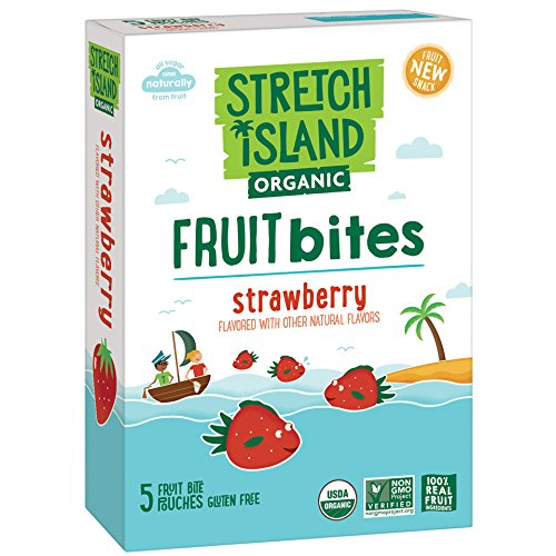Stretch Island Organic Fruit Bites, Strawberry, 5 ct -