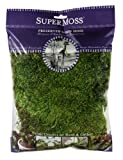 SuperMoss (21542) Mood Moss Preserved, Fresh Green, 4oz