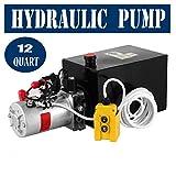VEVOR 12V/DC Hydraulic Pump 12 Quart/ 3.12 Gallon Single Acting Metal Reservoir Hydraulic Pump Unit Remotely Controlled for Dump Trailer (12 Quart ,Single Acting )