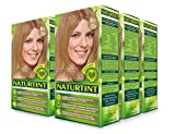 Naturtint Permanent Hair Color - 8G Sandy Golden Blonde, 5.28 fl oz (6-pack)