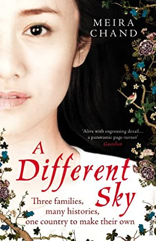 book cover of A Different Sky