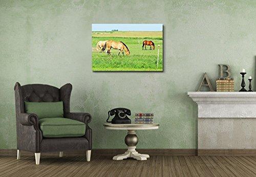 Three Horses Grazing on Green Meadow Wall Decor