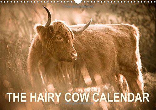 Download The Hairy Cow Calendar 2016: Evocative images of Highland Cattle on Norfolk grazing marshes (Calvendo Animals) pdf