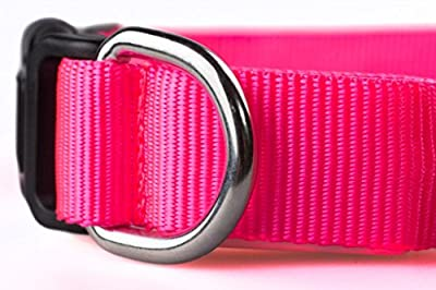 Flashing Dog Collar to Keep Your Dog Safe. High Quality LED Dog Collar with Extra Batteries. Your Best Friend Deserves Safe Night Walks