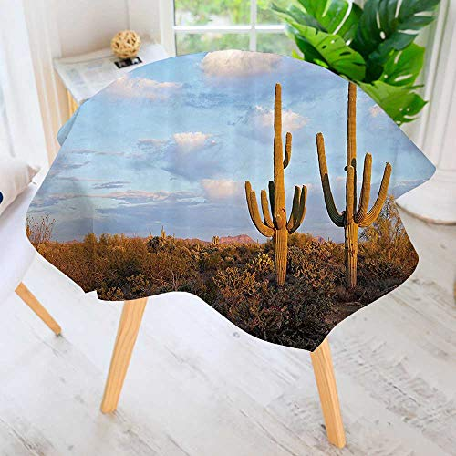 Philiphome Round Tablecloth-Saguaros SunPrickly Pear Cactus Hardy Plants Under Summer Sky Clouds Waterproof Wine Tablecloth Wedding Party Restaurant 35.5