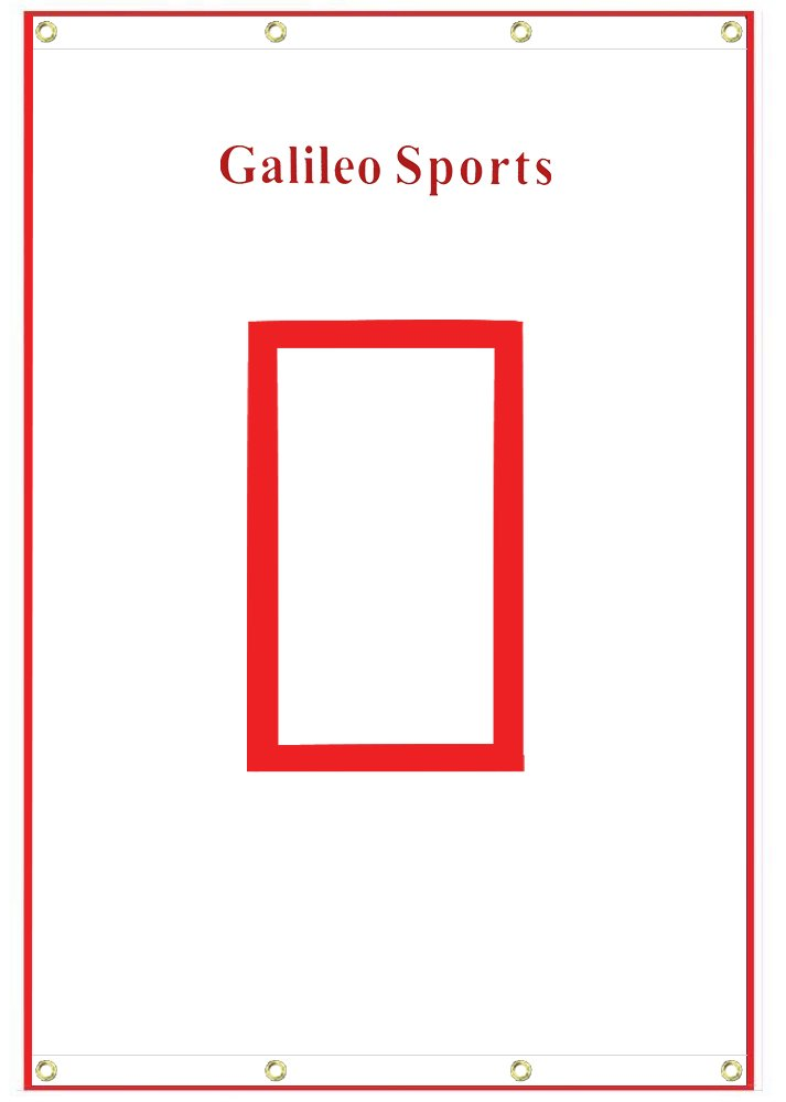Galileo Baseball/Softball Tarpaulin Backstop Batting cage Target with Bungees 4X6 by Galileo