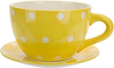 Giant Teacup & Saucer Planter