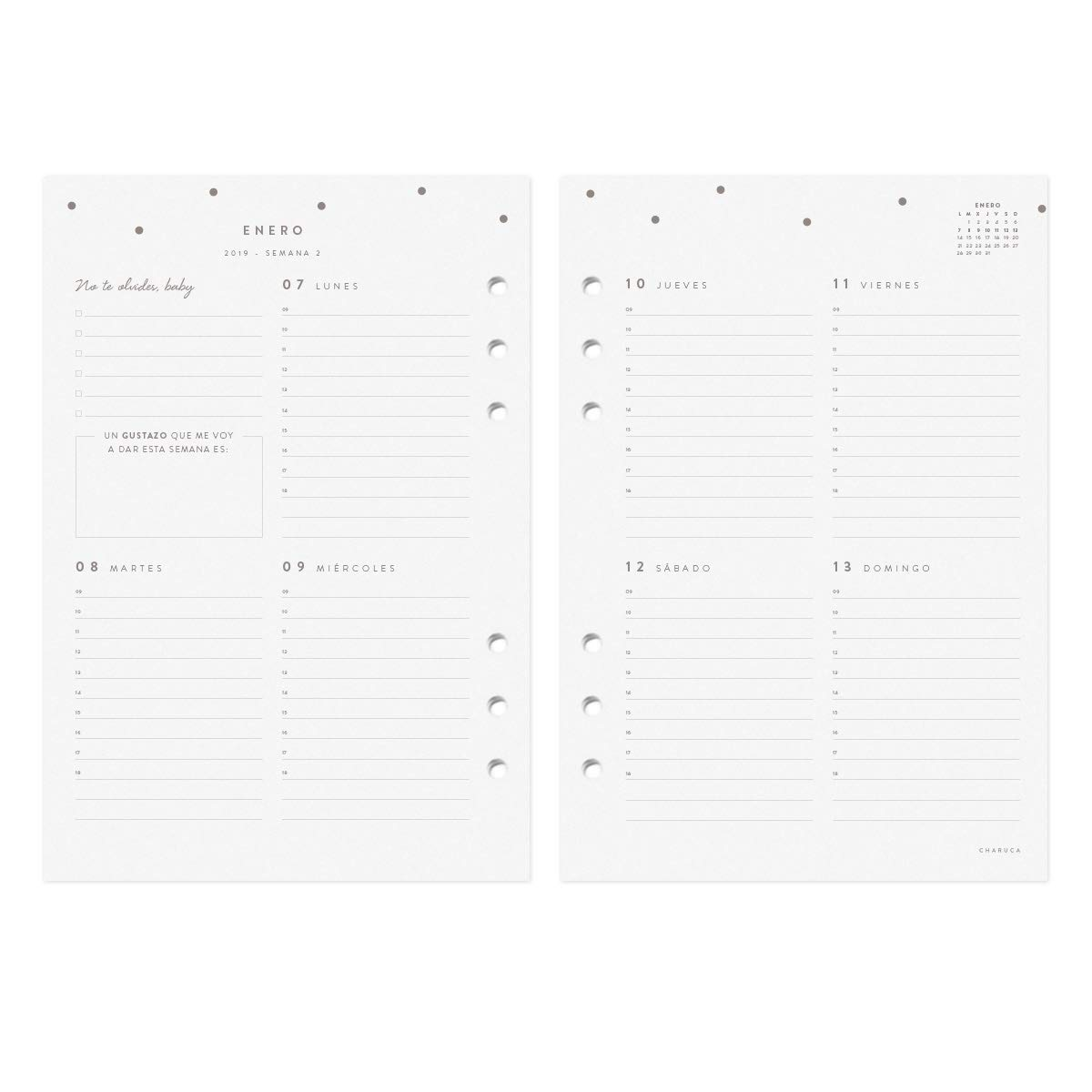 Amazon.com: Recambio para agenda 2019 A5: Office Products