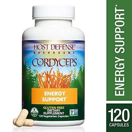 Cordyceps Supplements