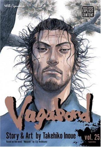 Download Vagabond, Vol. 25 ebook