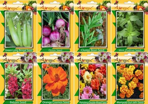 Shopmeeko SEED Green Long Brinjal, Onion, Cluster B, Mint (Pudina), Balsam, Orange Cosmos, Portulaca Mixed and Mari Gul Jafri Seed + Humic (For Growth of All and Better Responce) 15 gm Humic + (Pack Of 40 seed * 4 Per Pkts of Vegetables) + (Pack Of 40 Seed