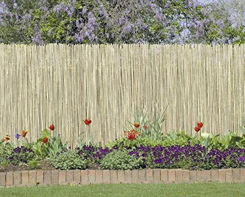 (WORLD SOURCE PARTNERS Fence Bamboo 13X5)