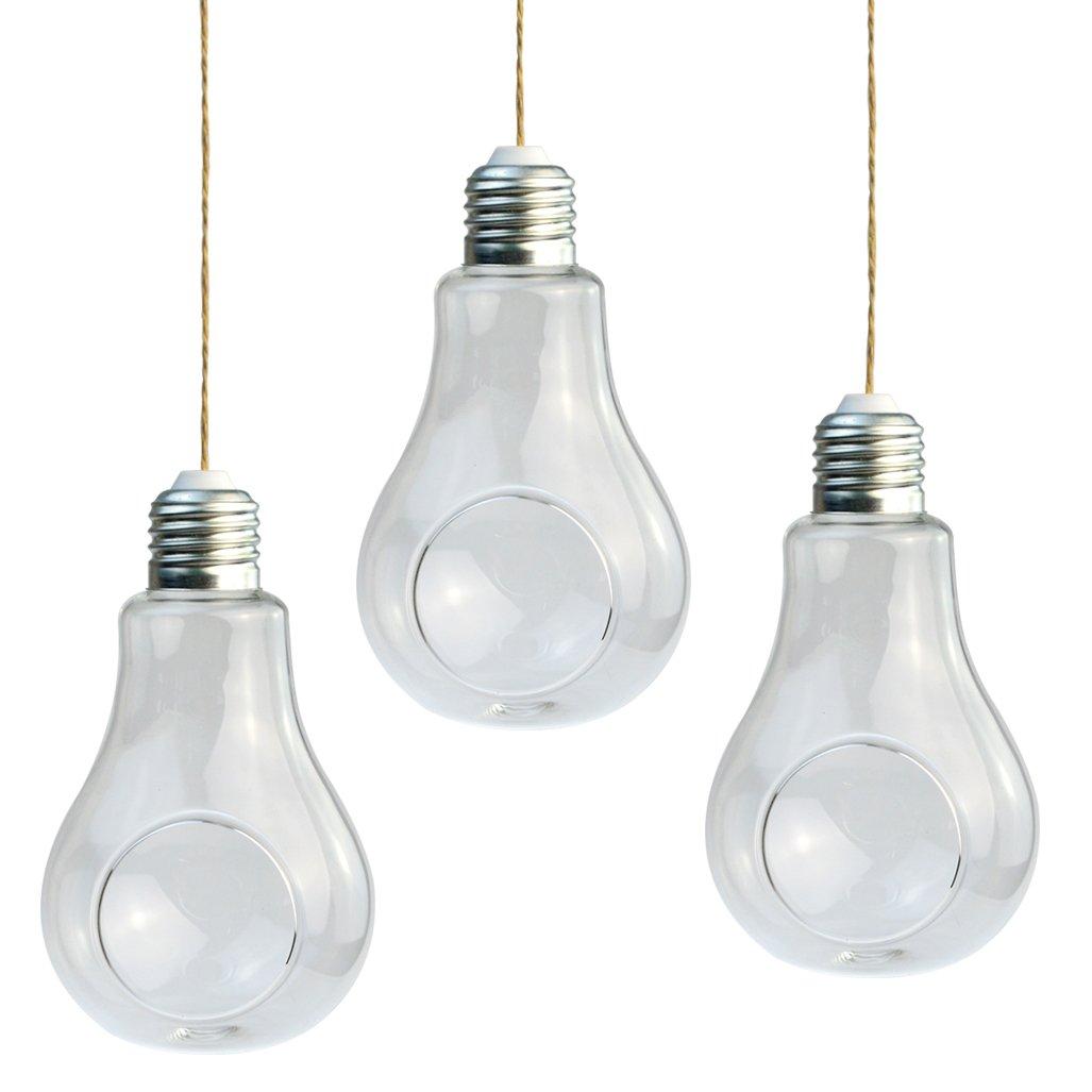 cnomg 3 pcs Light Bulb Hanging Planter Terrarium Glass Vase, Small Hanging Planter for Succulent Air Plant by cnomg