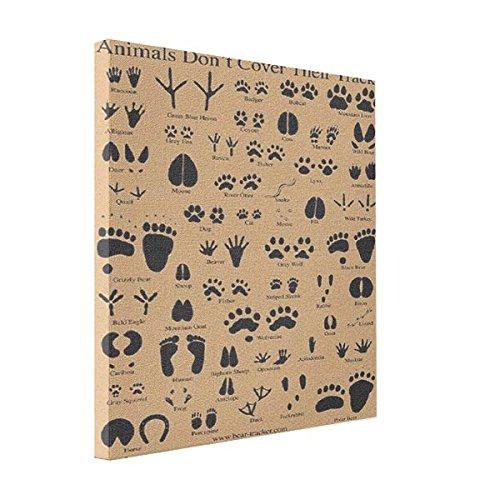 Animal Tracks Canvas Print Wall Art Decor - Animal Tracks Wall Art