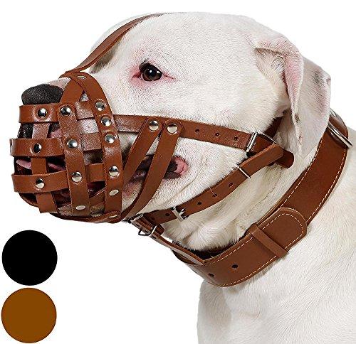 CollarDirect Dog Muzzle Boxer American Bulldog Leather Basket Medium Large Black Brown (Black, M)