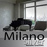Milano Silver Metallic (Fine) Authentic Venetian Metallic Plaster from Italy. The ultimate in luxury finishes.