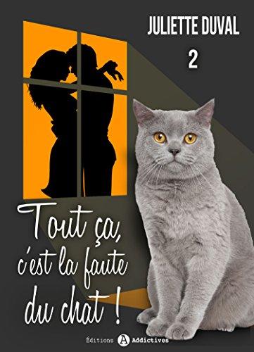 Tout ça, c'est la faute du chat ! - 2 (French Edition)