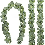 CEWOR 3 Packs Artificial Eucalyptus Leaves Garland