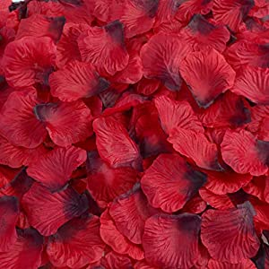 obmwang 3000Pcs Dark Silk Rose Petals Wedding Flower Decoration Artificial Red Rose Flower Petals for Wedding Party Favors Decoration and Vase Home Decor Wedding Bridal Decoration(3000pcs Red) 3