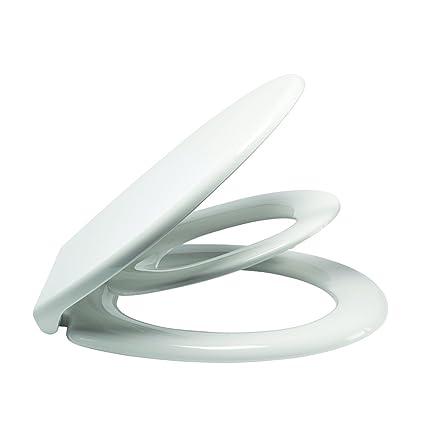 Prime Korona Mv125F Soft Close Top Fix Metal Hinge Family Toilet Inzonedesignstudio Interior Chair Design Inzonedesignstudiocom