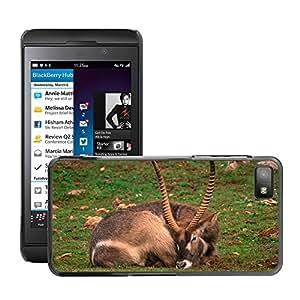 GoGoMobile Etui Housse Coque de Protection Cover Rigide pour // M00119496 Cabra Animal Cuernos Naturaleza Monte // BlackBerry Z10