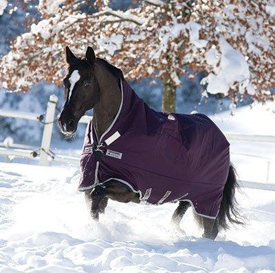 Purple Silver 81 Purple Silver 81 Horseware Rambo Turnout Wug Sheet, Light Weight, Purple Silver 81