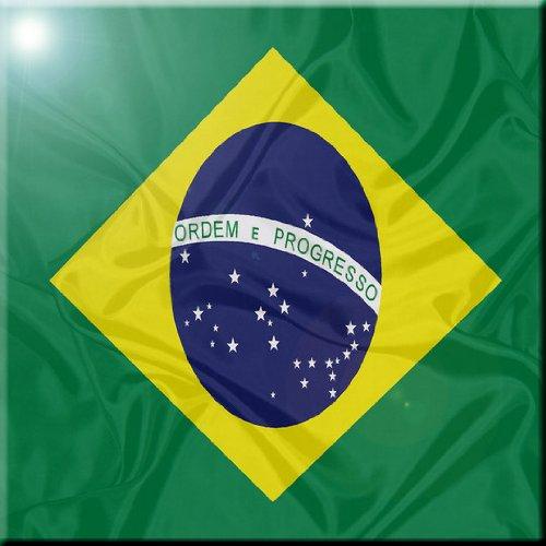 Rikki Knight Brazil Flag Design Ceramic Art Tile 12 x 12