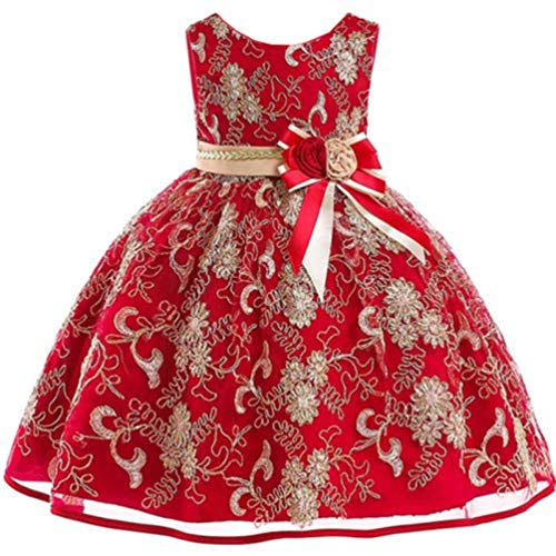 (JIALANPTT Pretty Gold Lace Floral Embroidered Formal Princess Dress Elegant Birthday Kids Dresses for Girls 7-8Years Red 3)