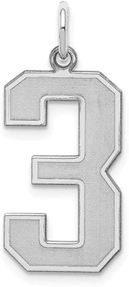 Sterling Silver Large Satin Number 3