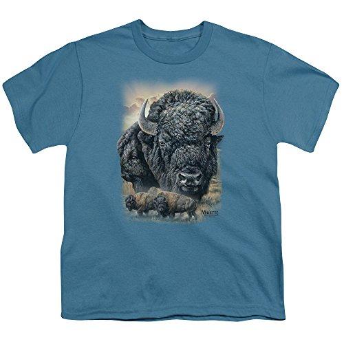 Wild Wings Sunset Buffalo Unisex Youth T Shirt For Boys and Girls (Buffalo Kids T-shirt)